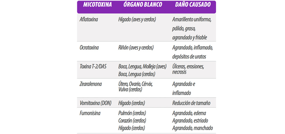 antimicotoxinas-tabla